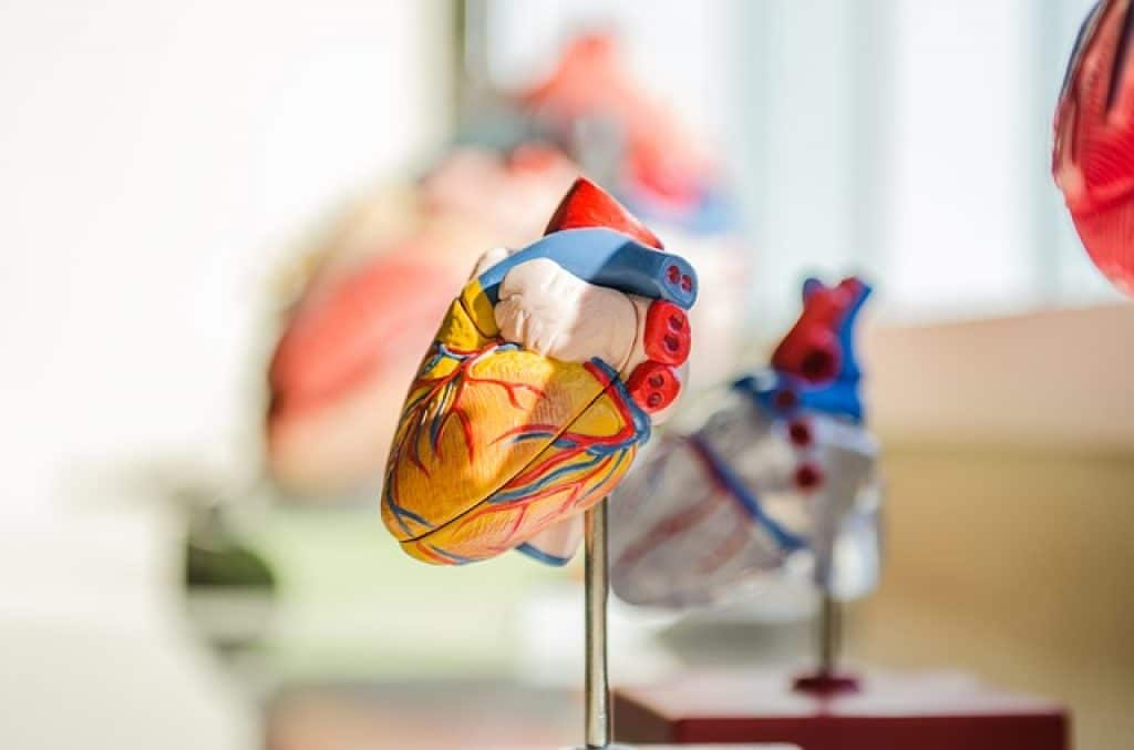 how many eggs per day can someone eat on keto diet depends on heart condition