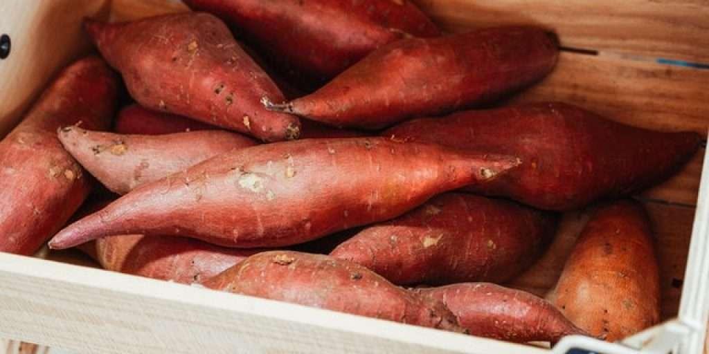 sweet potato is the one veggie that kills high blood pressure