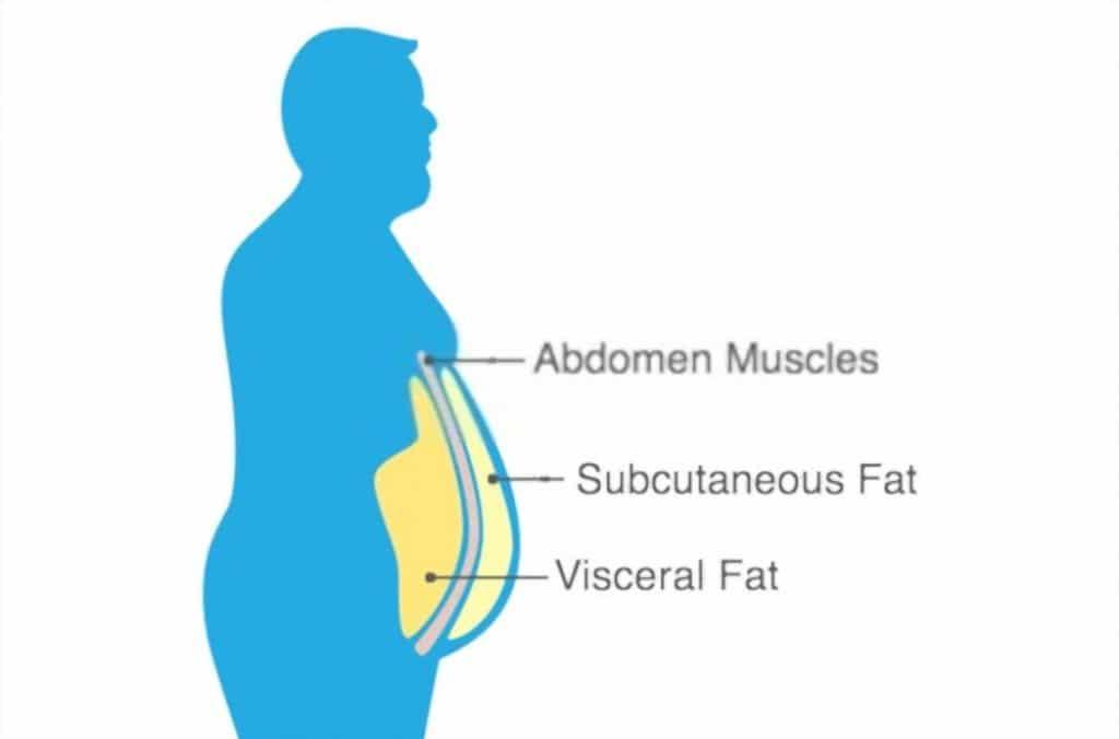 how to gain subcutaneous fat