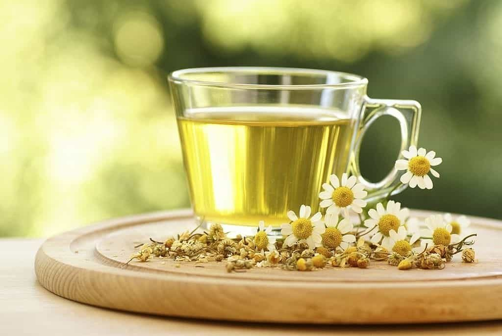 Chamomile tea as a replacement for Herbalife Shakes