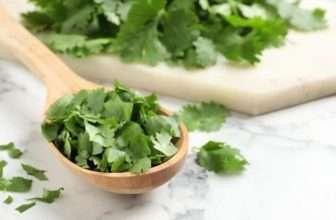 Is cilantro spicy?