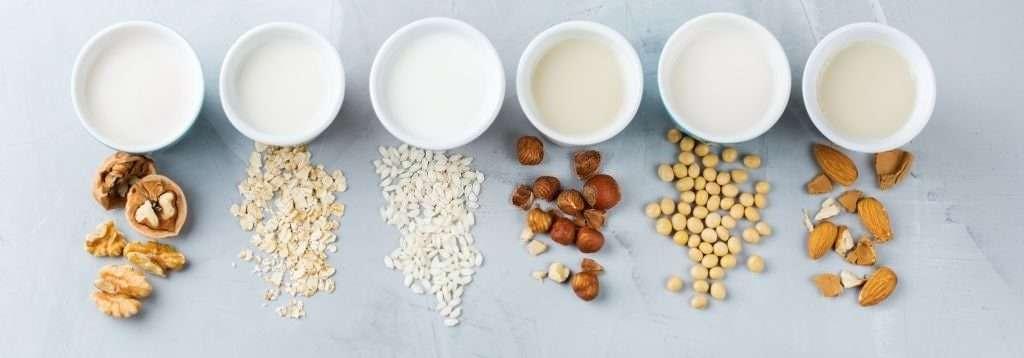 Plant Milk Alternatives