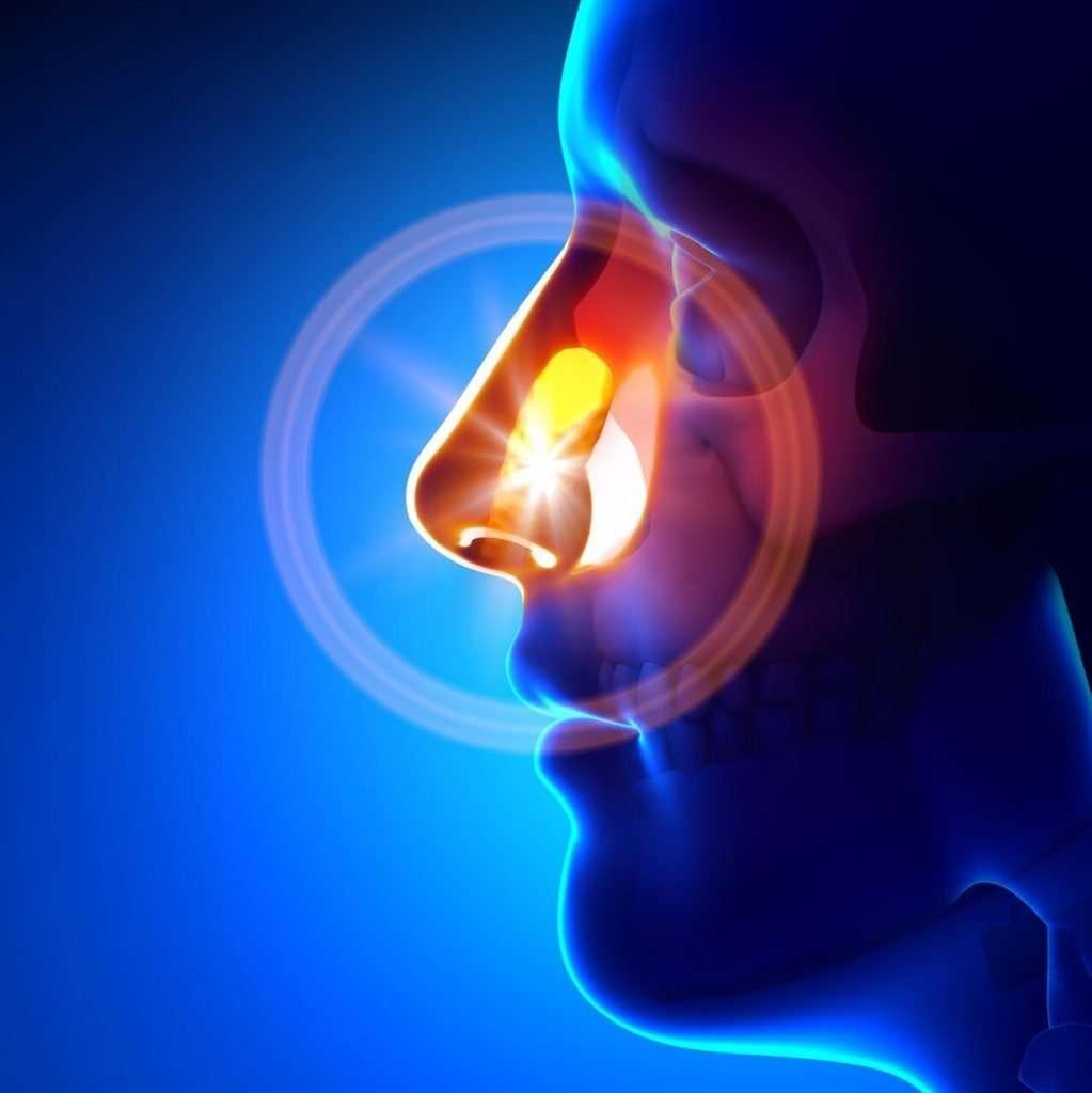 something-is-stuck-in-sinus-cavity