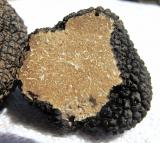 What Does Truffle Taste Like?