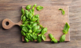 What Does Basil Taste Like? 10 Wonderful Basil Types & Their Flavor (Spice up Your Herb Garden)