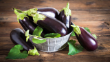 Eggplant: All You Need to Know